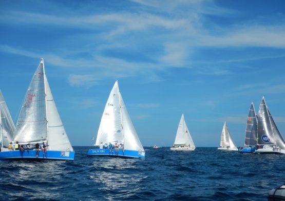 Sail in Asia Fleet