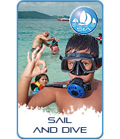 Schools – Learn to Sail and Dive
